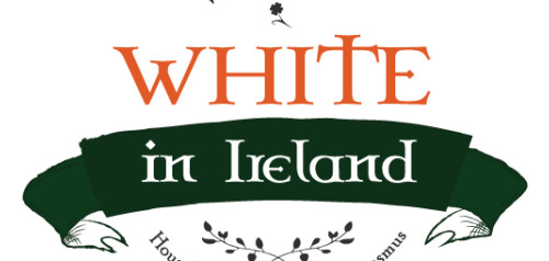 WHITE in Ireland (Work experience Housing Internship Training Erasmus)